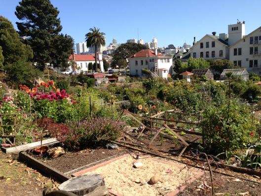 Mason Community Garden